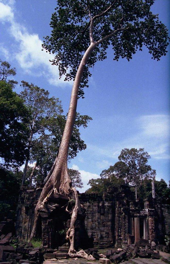 thailand0022.JPG